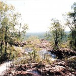 Kakadu Walk0001