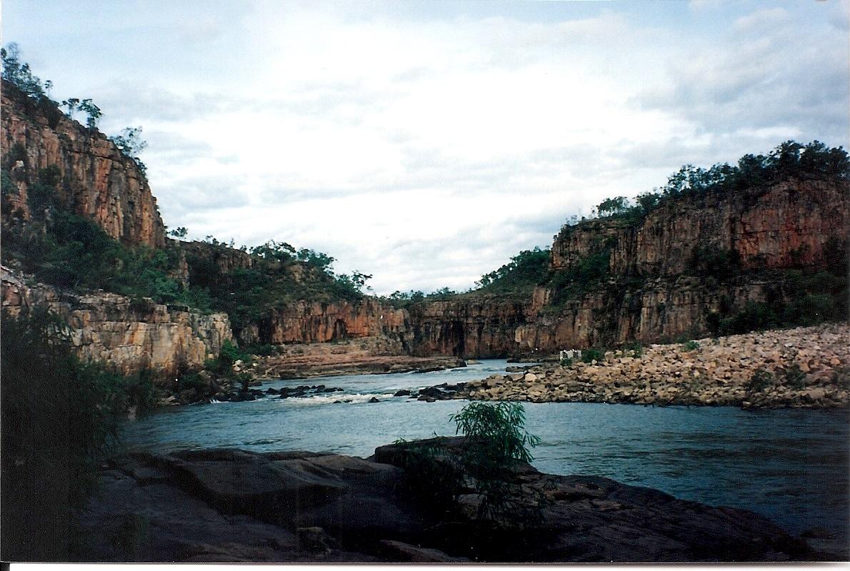 Katherine Gorge Kakadu0001
